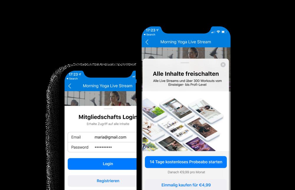 In-App Käufe und Monetarisierung